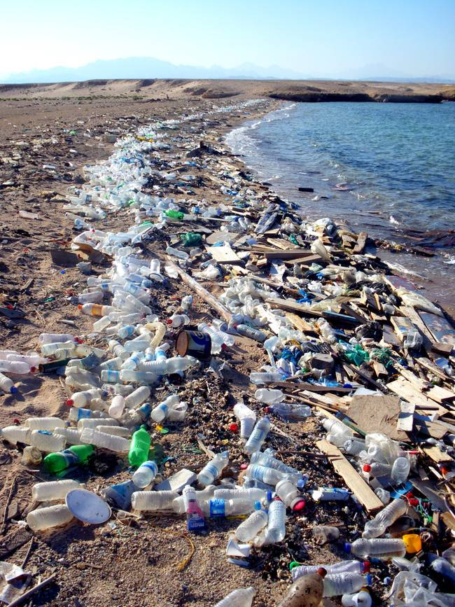 plastic-beach.jpg.650x0_q70_crop-smart